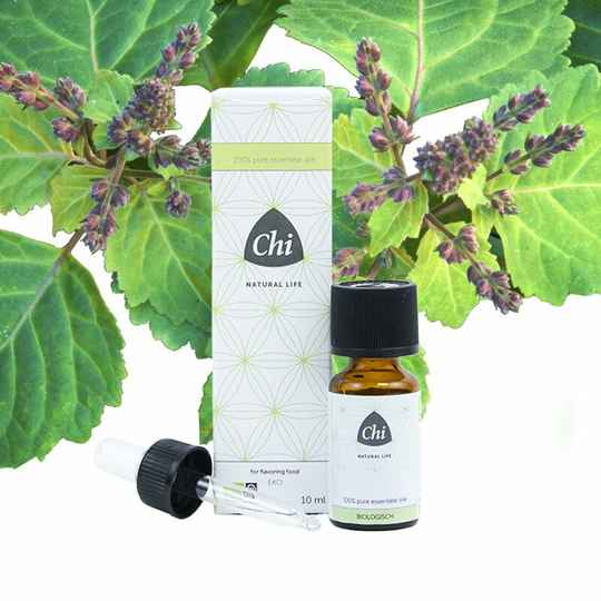 Patchouli etherische olie eko bio 10ml CHI
