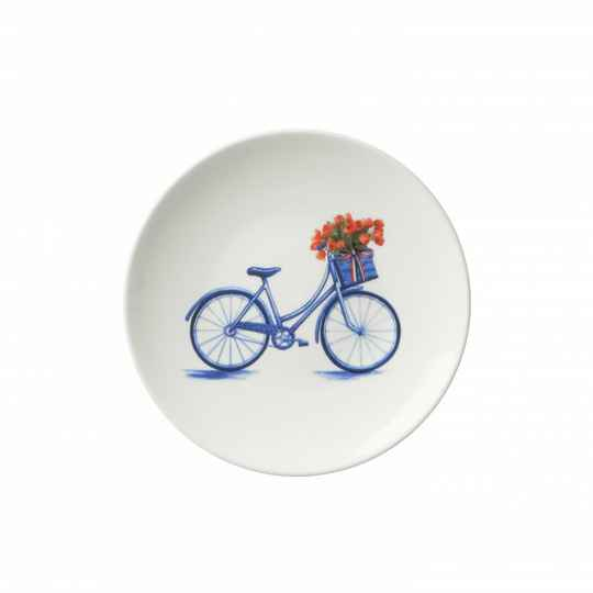 Plate bicycle