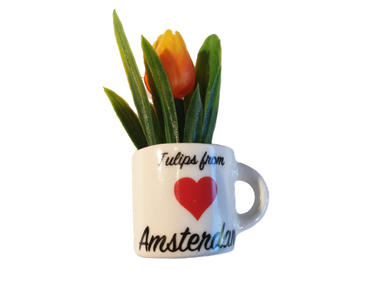 Magnet orange tulip in mug