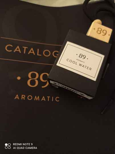 Aromatic 89 cool water carfreshner