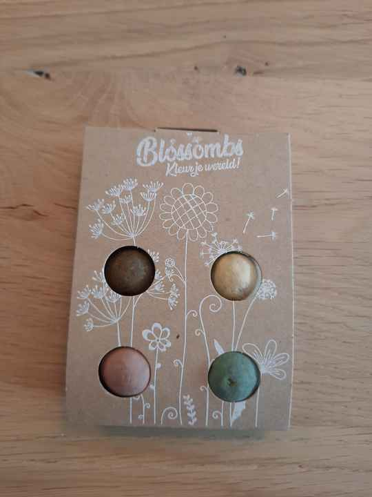 Blossombs_4