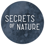 Secrets of Nature
