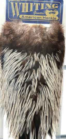 Whiting American Hackle Silver Badger