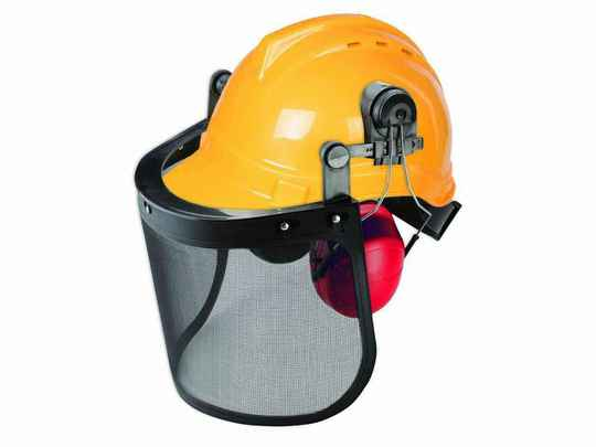 Professional forestry helmet - with ear protection