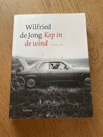 Wilfried de Jong - Kop in de wind