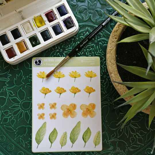 Stickers: botanical watercolor paintings 001