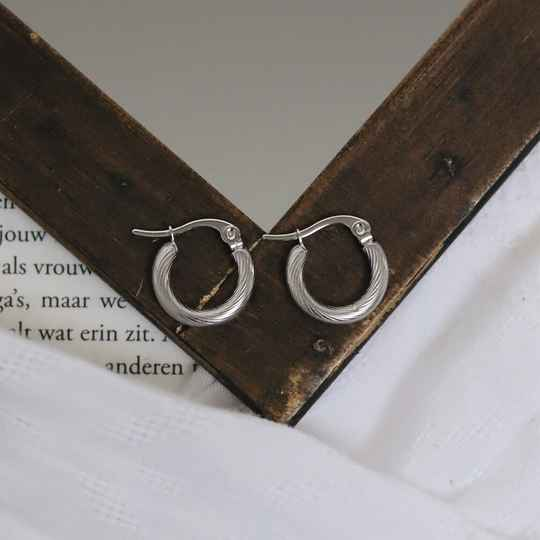 Silver small twisted earrings