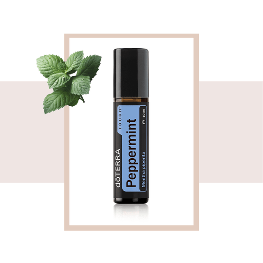 Peppermint Touch 10 ml