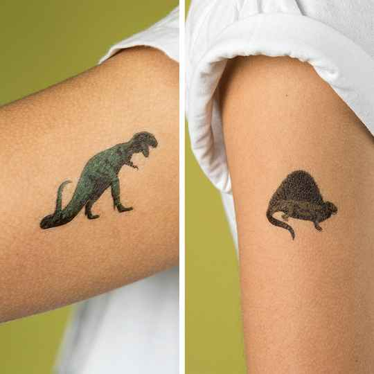 Temporary tattoos 'prehistoric land'