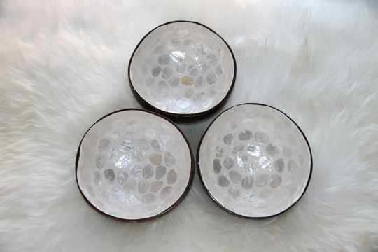 Coconut Bowl Pearl White Mother of Sea