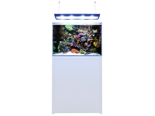 Blue Marine Reef 200 Wit Aquarium + Meubel