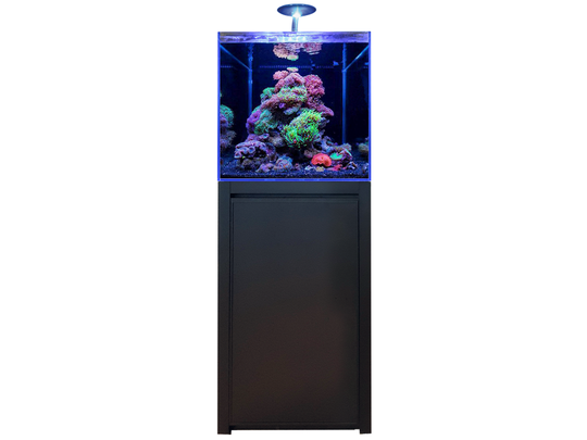 Blue Marine Reef 125 Zwart Aquarium + Meubel