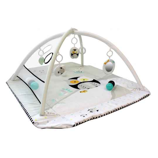 5-in-1 Activity Gym Owl