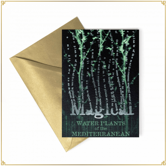 Harry Potter - Notecard Magical Water Plants of the Mediterrane - MinaLima