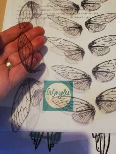 Cicada/ fairy wing collage for all your crafting projects