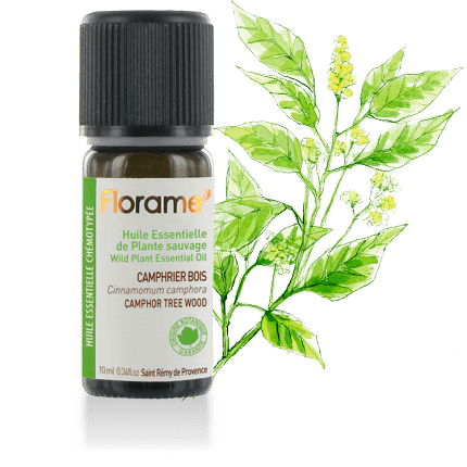 Florame kamferboom hout 10ml - 1848