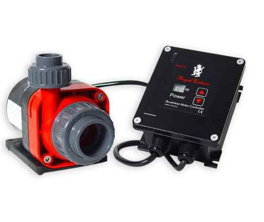 Red Dragon® 3 Mini Speedy 60 Watt / 5,5m³ / 10V Regeleingang