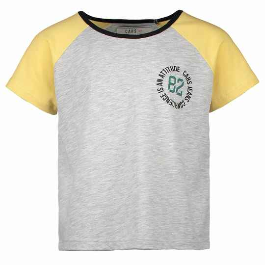 Cars Jeans t-shirt 3736453 Grey Melee
