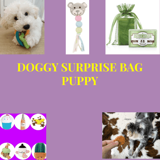 Surprise Doggy Bag Puppy