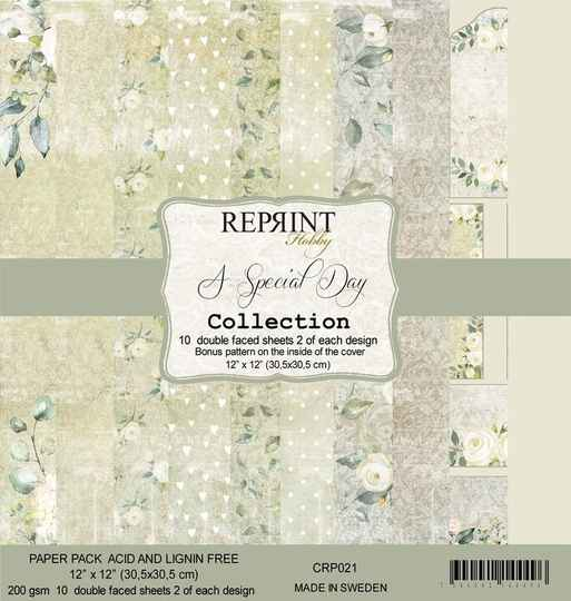 ReprintA Special Day 12x12 Inch Paper Pack (CRP021)