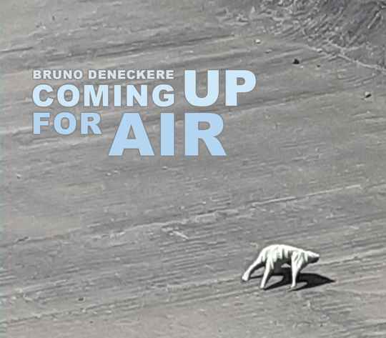 Coming Up For Air - Bruno Deneckere