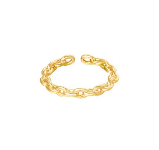 Connection klein ring goud