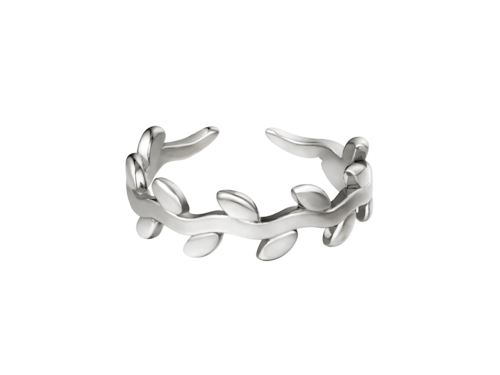 Fairy Ring Zilver