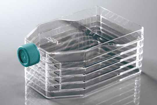 5-Layer Cell Culture Flask
