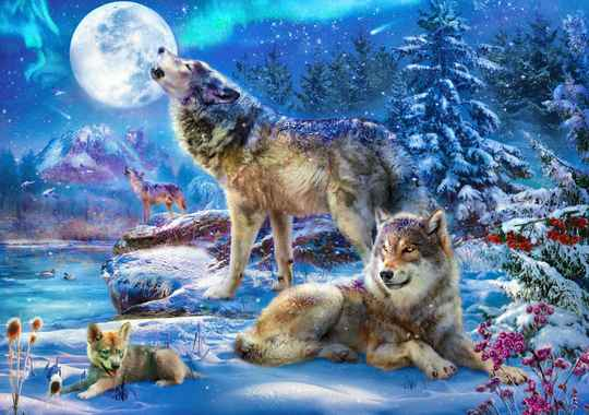 Winter Wolf Family -  Puzzle 1,500 pieces Gs13671