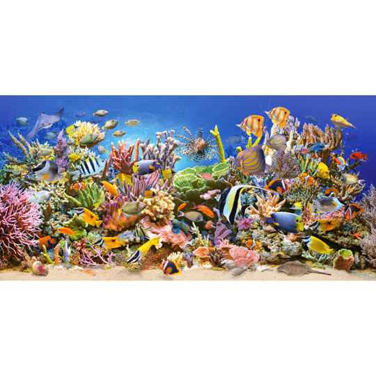 The underwater life -  Puzzle 4,000 pieces gs15028