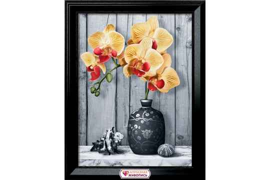 Orchid on marble 30x40 DP756