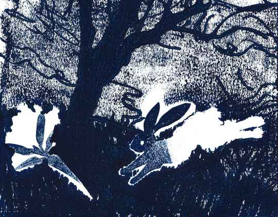 Every hare's dream (2)