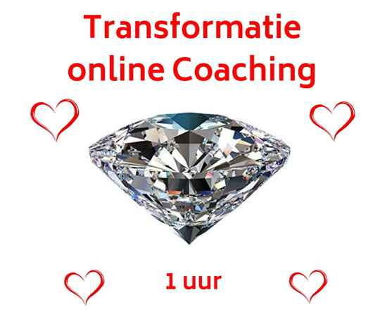 Coaching 1 uur online (via Skype of Zoom)