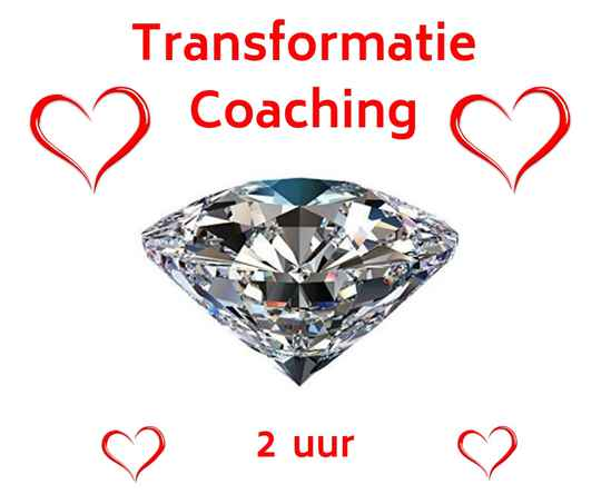 Coaching 2 uur (in persoon)