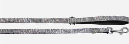 Collar and leash silver snake