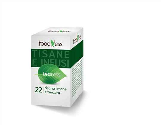 Foodness Teaness - 22 Lemon & Ginger Herbal (20 zakjes)