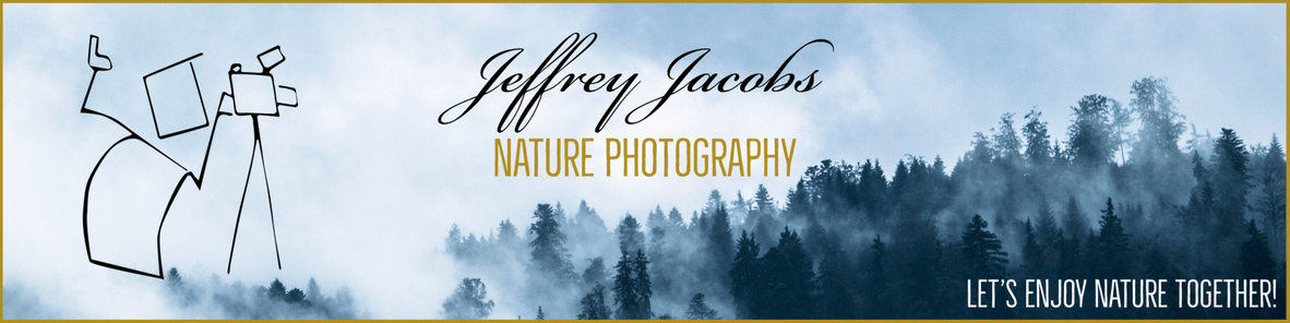 nature-photography