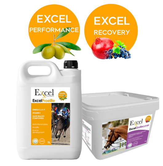 Package Excel ProElite 5L + GraRecover (1kg)
