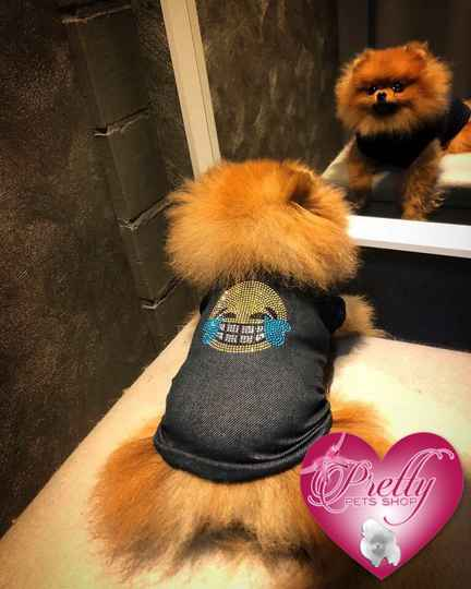Smiley for Pretty Pets Shop