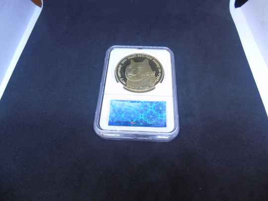 DOGE coin gold plated verzamelmunt