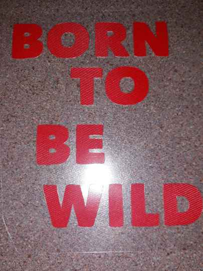 Born to be wild applicatie